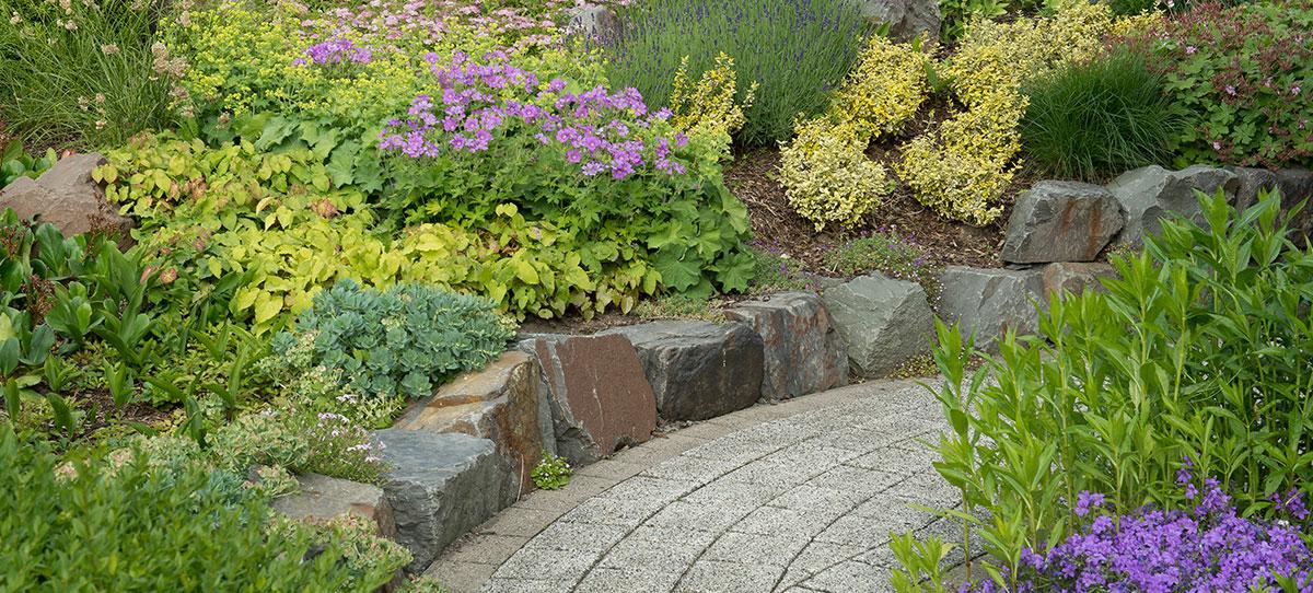 Bepflanzung rasen klein gartengestaltung landschaftsbau for Gartengestaltung klein