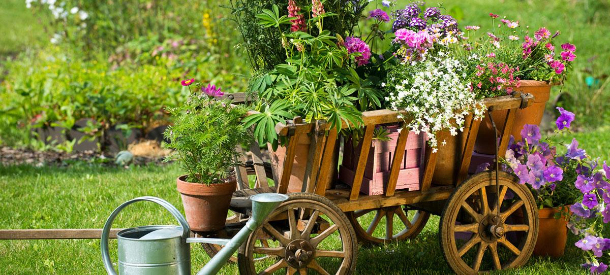 Gartenpflege klein gartengestaltung landschaftsbau for Gartengestaltung klein